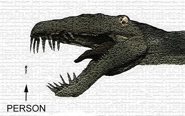 New Dino Head.jpg