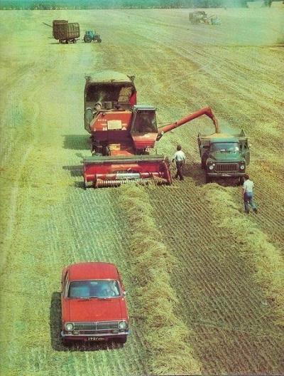 Фото советское и современное сельское хозяйство сравнение