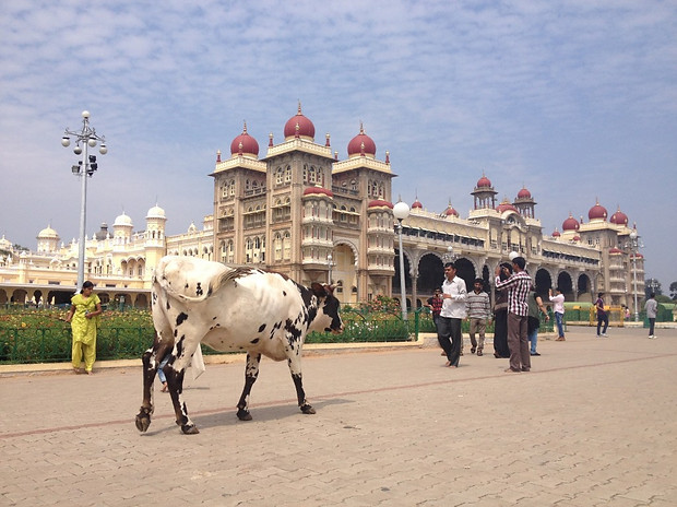 Mysore, India, November 2014