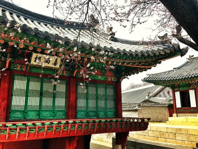 Four Tiny Jews in Korea: Jacobs Family Vacation Part 5