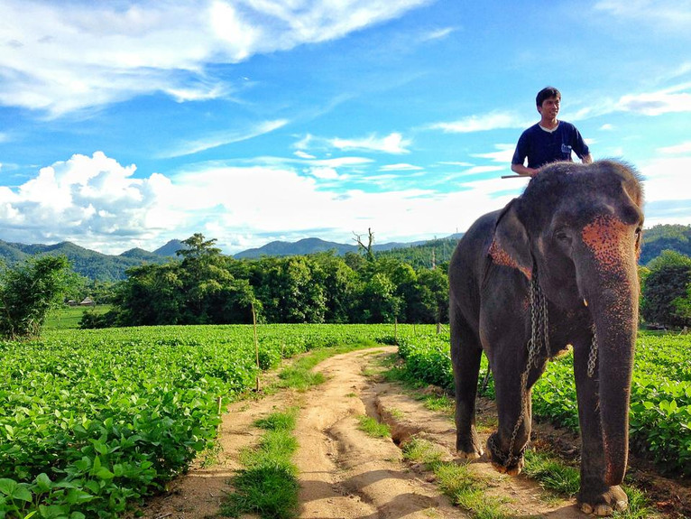 Don't Eat the Massaman Curry at Cave Lodge: Stories from Thailand, Part 1