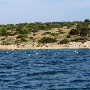 Weekend Trip to Zadar, Croatia