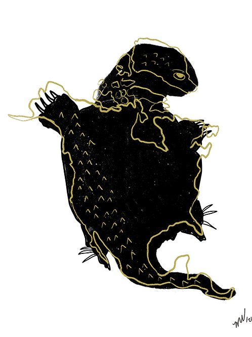 Turtle Island Downloadable Print