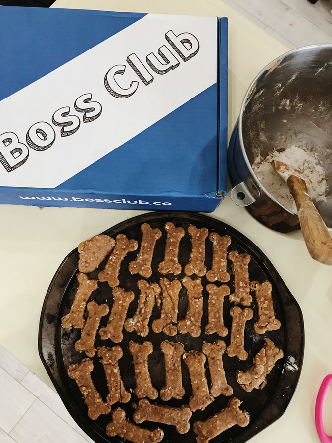 The Boss Club for Kids