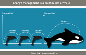Organizational-change-The-whales-versus-dolphins-concept