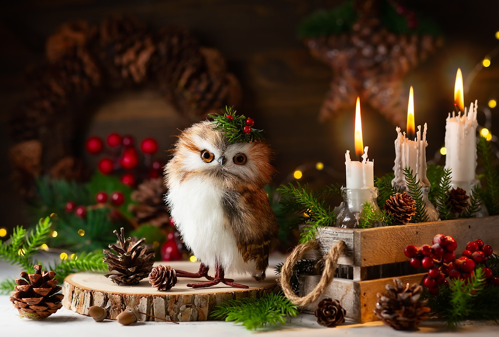 Winter Holiday Animals