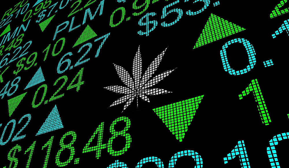 Top 10 Cannabis Startups in 2021