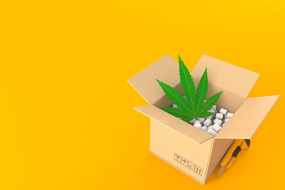 Buy Weed Online And Have It Delivered To Your Door
