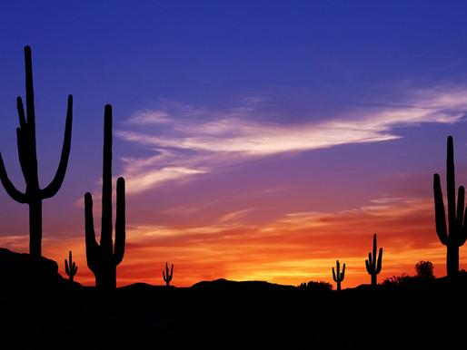 Interesting Phoenix Area Trivia: Part II