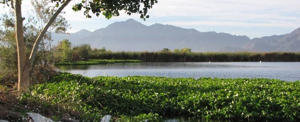 Tres Rio Wetlands
