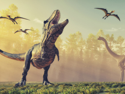 10 Impressive Prehistoric Animal Teeth