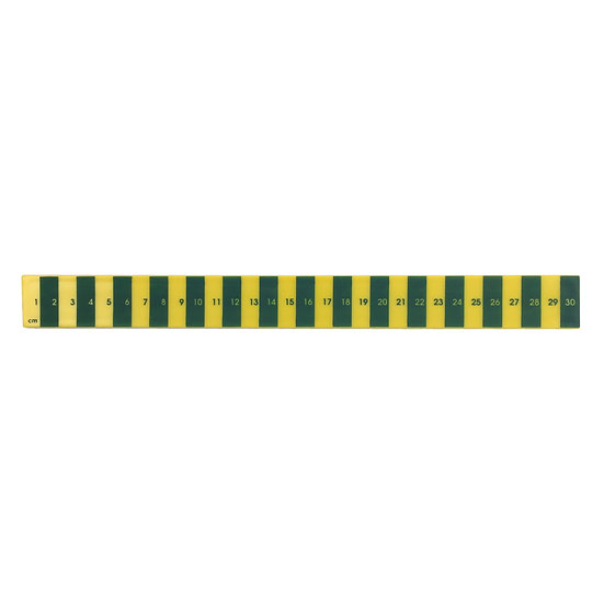 SCENERY LABEL Striped Ruler Green