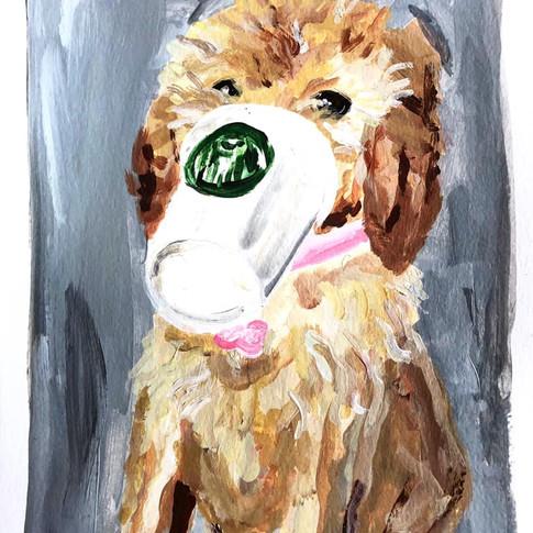 Starbucks_Dog_Painting.jpg