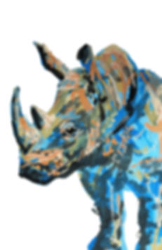 Rhino_Rectangle.jpg