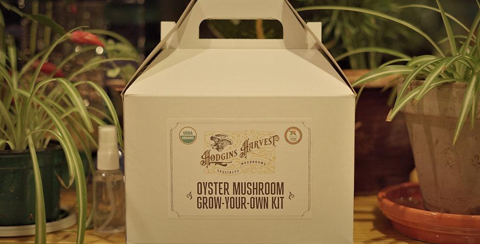 Organic Oyster Mushroom Grow Kit