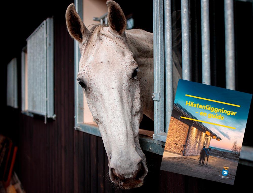 #hästanläggningarenguide #hästanläggning #ridskola #stall #ridhus #svenskaridsportsförbundet #ridsportsförbundet