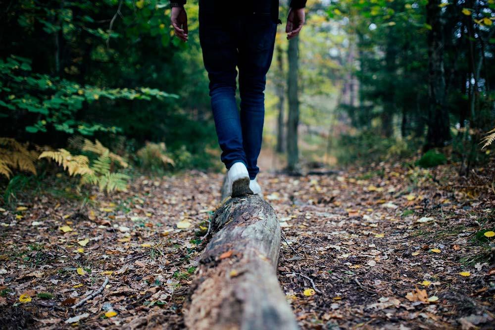 #skogochhälsa #slu