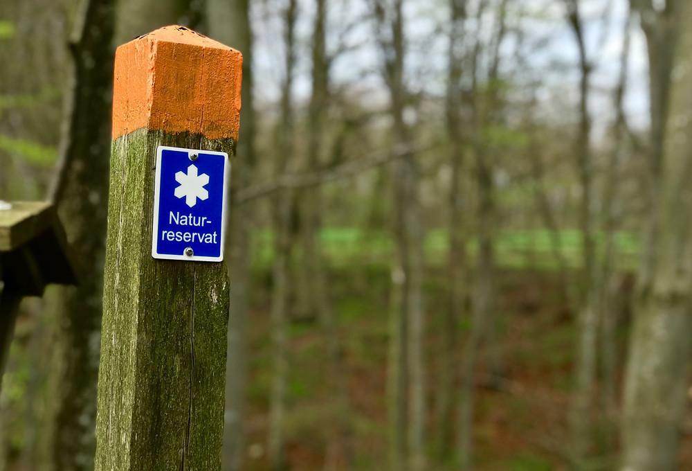 Skånes mest populära naturreservat slog besöksrekord förra året med trängsel, slitage och nerskräpning som följd.