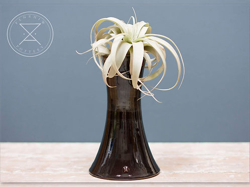 X Large Fluted Airplant holder or Vase