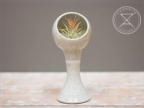 Large Airplant holder.