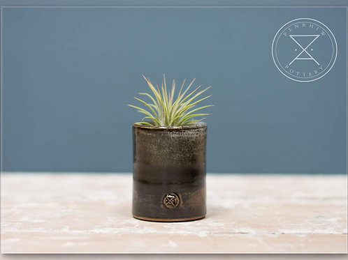 Small Airplant holder.