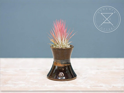 Small Fluted Airplant holder.