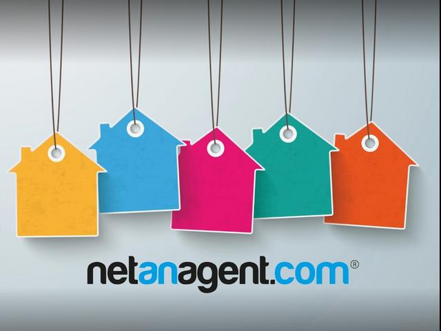 Net an Agent