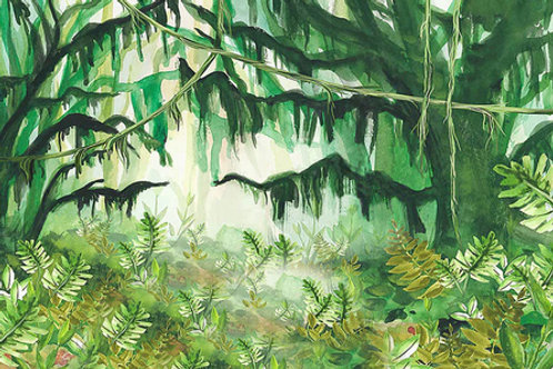 Tło dżungla 150x100cm