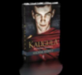 Kubicz Kaligula Wyznania szalenca 3D.png