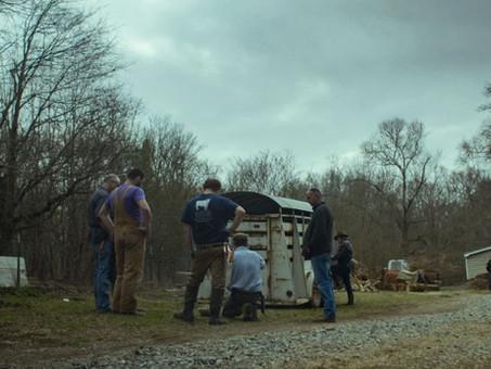 Comfort Farms: La paradoja humana