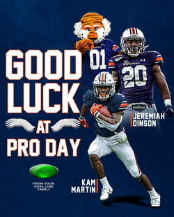 Auburn Pro Day Graphic