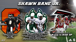 Shawn Bane Stat Graphic