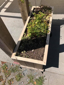 After - Exterior Planter Trim