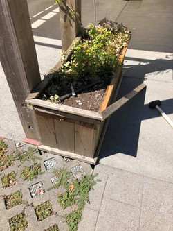 Before - Exterior Planter Trim