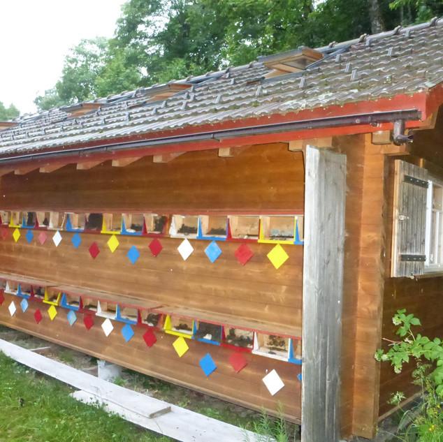 2007 gebautes Bienenhaus von Franz Koller, Stein
