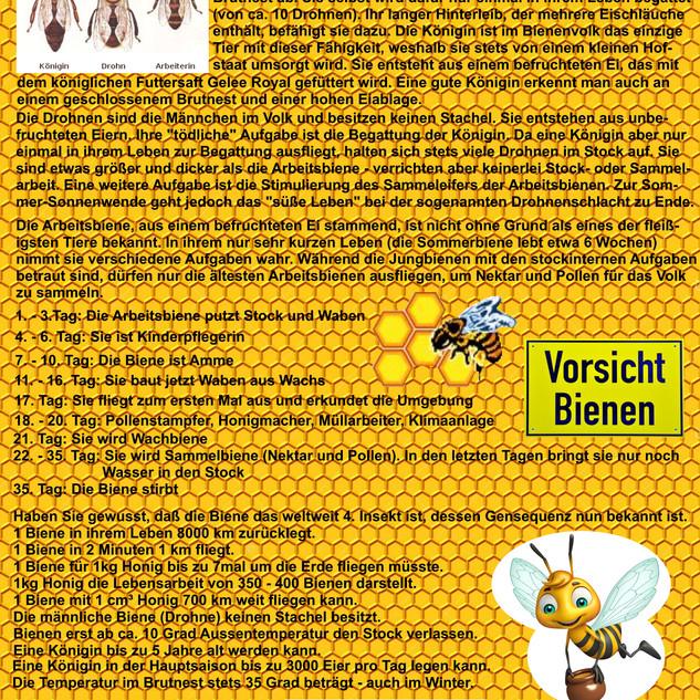 Bienen-Infos