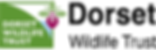 Dorset Wildlife Trust.png