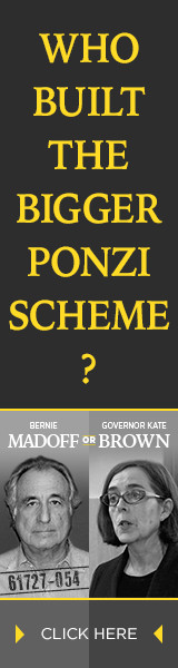 Who Built the Bigger Ponzi Scheme? Kate Brown or Bernie Madoff?