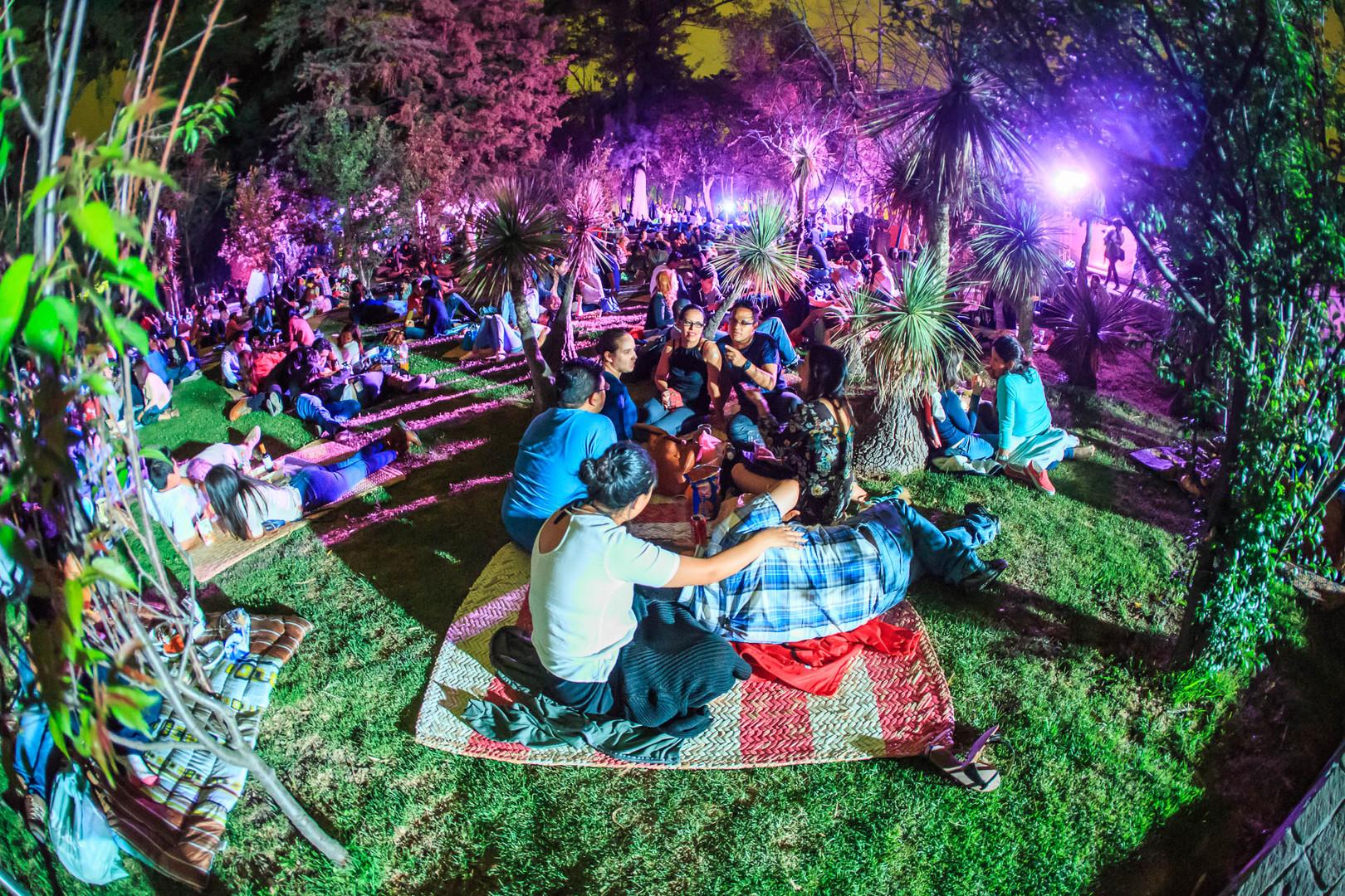 Picnic nocturno, Bosque de Chapultepec