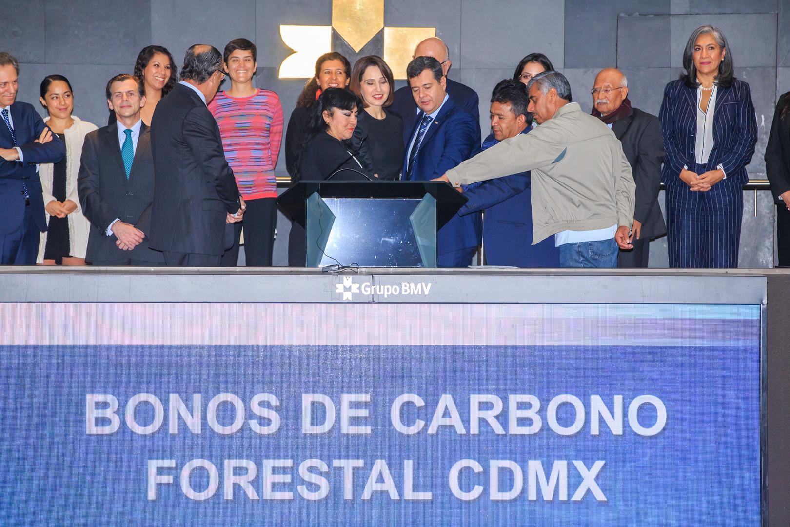 Bonos de carbono forestal