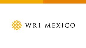 LA CALIDAD DEL AIRE COMO POLÍTICA AMBIENTAL INTEGRADA EN LA CIUDAD DE MÉXICO: LECCIONES APRENDIDAS