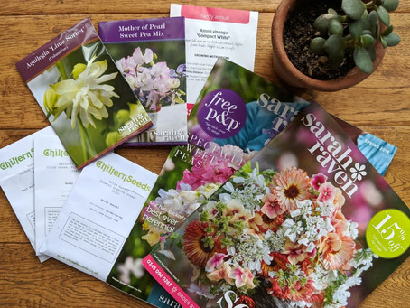 Planning and tips for sowing seeds