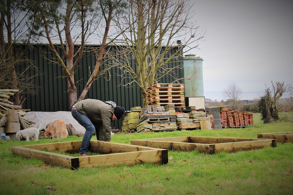 Dave setting up the flower beds ready for sowing seeds for the cut flower garden expansion