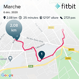 fitbitshare_937349155.png
