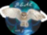 H.E.A.L_logo.png