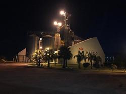 Nueva Palmira a la noche