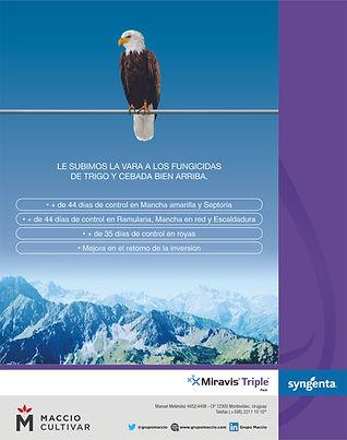 MIRAVIS TRIPLE PACK Observador - 09 04 2021.jpg