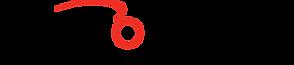 logo-nwo-nl-png-doorzichtige-achtergr-wi