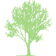 tree-68-512.png