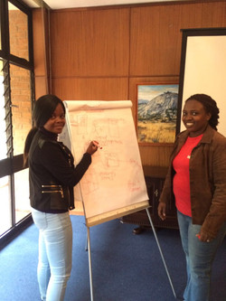 Lead Audit Harare 2016-15
